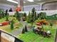 8° Landbouw Miniatuurbeurs O.T.L.