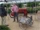 Guy Pieters, hortensiakweker en Groot verzamelaar